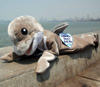 PETA's 'Dolphin' Protested against the  Proposed Sindhudurg Marine Park
