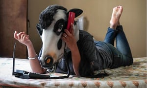 Indian women wear cow masks to ask: are sacred cattle safer than us?