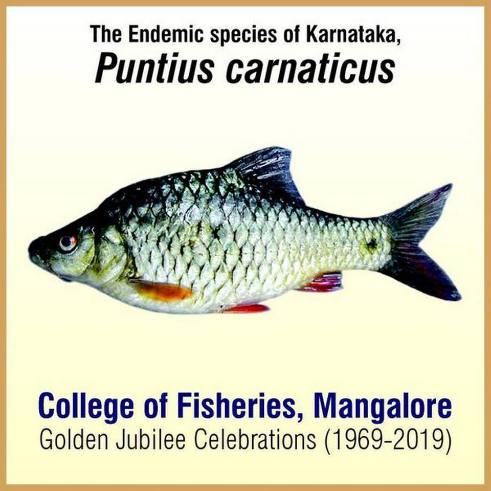 Postal stamp on fish speciesto be released today