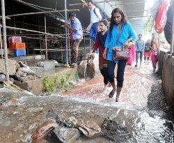 Flood at Sewri station after pipe burst