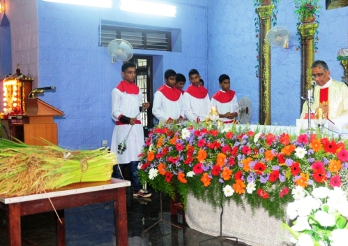 Monthi Fest Celebrations at holy cross church church,pamboor
