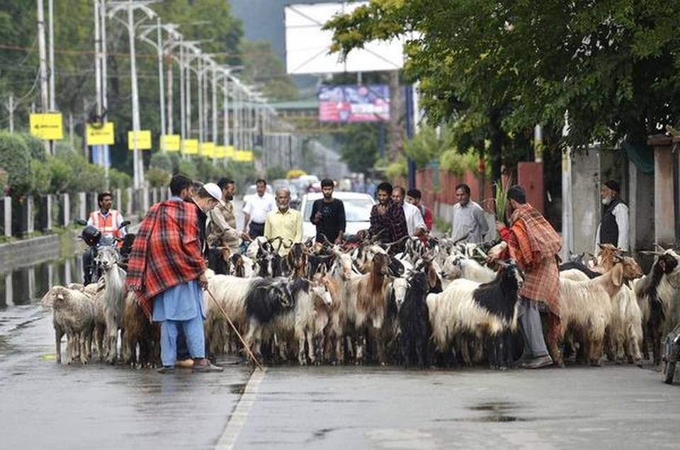 Curbs eased in Srinagar, people throng streets to buy essentials
