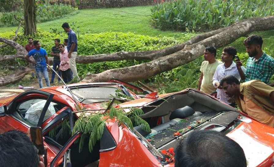 Ujire: Tree falls on car and kills two youngsters