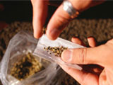 Bangalore: Drugs sold outside colleges in Bangalore