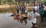 Mangaluru: Four of a family drown while taking bath