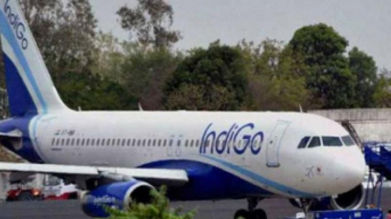 IndiGo quarterly profit soars to Rs 1,203 cr; higher passenger revenues