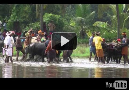 Watch Thonse Kambla 2010 Video