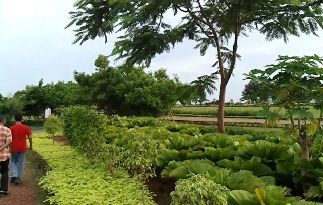 Manipals very own tree park opens today